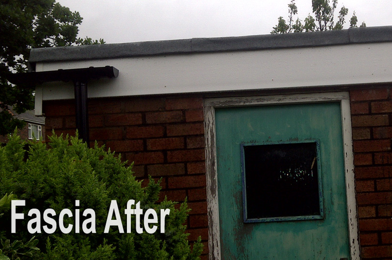 Fascia After