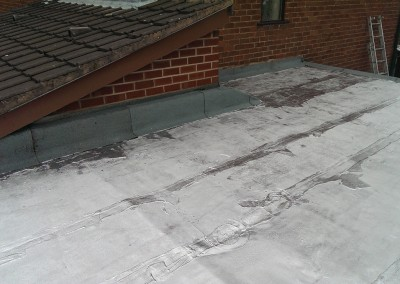 Flat Roof After1
